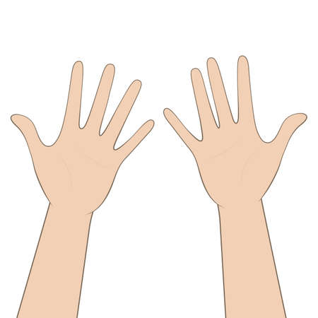 Women's hands, palms up. Vector.