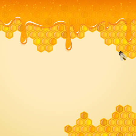 wax glossy: Background with honeycombs and bee. Vector.