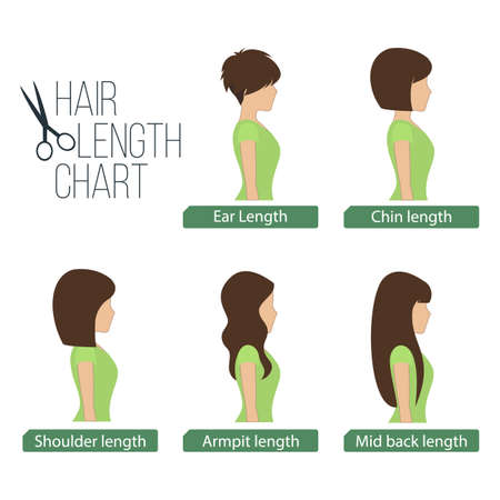 Largo del cabello vista lateral gráfico, 5 longitudes de pelo diferentes.