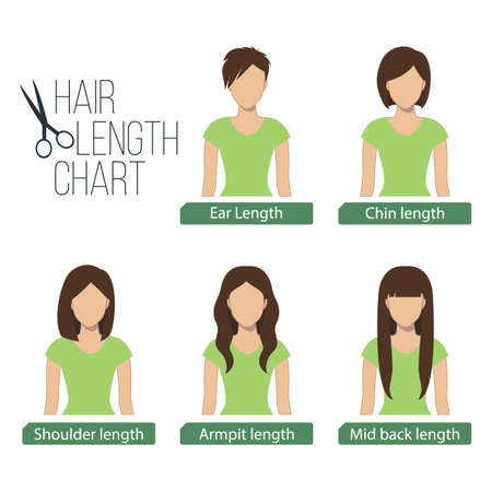 medium length: Hair length chart front view,5 different hair lengths.