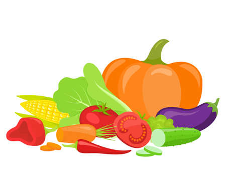 Set of fresh vegetables, isolated on white background. Illustration