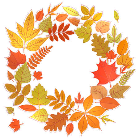 flora: Wreath of yellow flora elements. Round frame with autumn leaves, circle shape template. Illustration