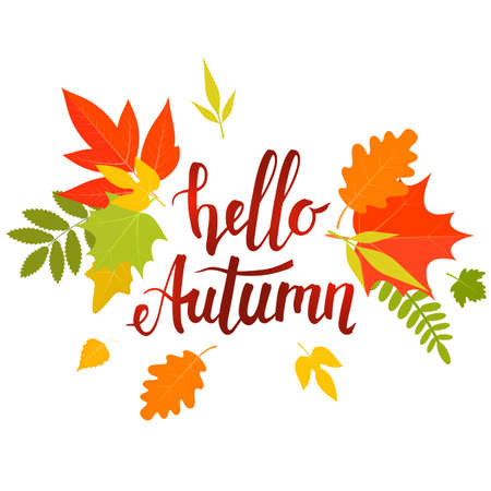 lettering, Hello autumn with yellow leaves. stock illustration.