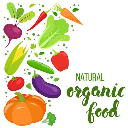 cellulose: Side vertical border with colorful vegetables. Template for packaging, cards, posters, menu. Handwritten lettering - organic food. Vector stock illustration. Illustration