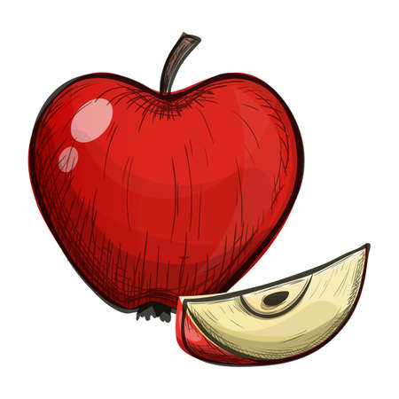 Colorful sketch style cartoon illustration of apple on a white background. Vector.