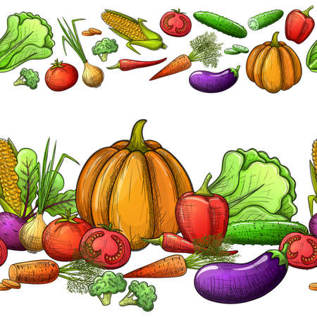 Colorful sketch style vegetables seamless horizontal borders. Eco organic fresh template with vegetables for the decoration of menu. Illustration