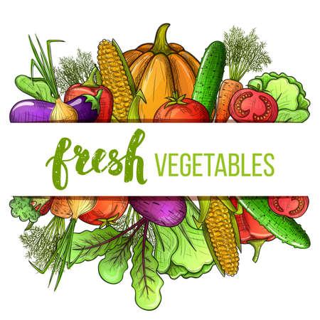野菜アイコンのカラフルなスケッチのスタイルを設定します。エコ野菜メニューの装飾のための有機の新鮮なテンプレート。  イラスト・ベクター素材