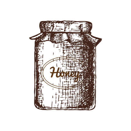 Honey ink sketch illustration