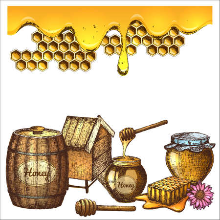Set of honey sketch. Stock Illustratie