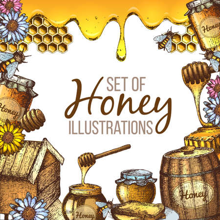 Set of honey sketch. Illustration
