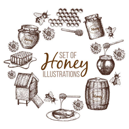 Set of honey sketch