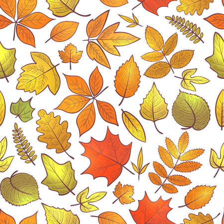 Seamless background with autumn leaves, hello autumn. Vector