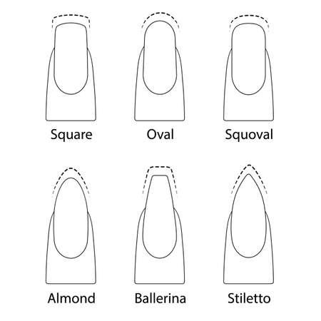 Set of nails shapes  イラスト・ベクター素材