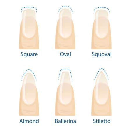 Set of nails shapes Ilustração