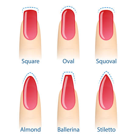 Nail manicure, set of nails shapes - oval, square, almond, stiletto, ballerina squoval Vector Çizim