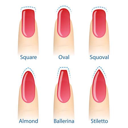 Nail manicure, set of nails shapes - oval, square, almond, stiletto, ballerina squoval Vector Ilustração