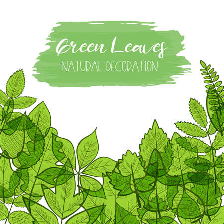 Background with colorful transparent skeleton green leaves, natural decoration. Vector