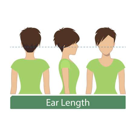 Hair length for haircuts and hairstyles - ear length. Vector.