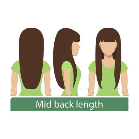 Haarlengte voor haircuts en kapsels - middenruglengte. Vector. Stock Illustratie