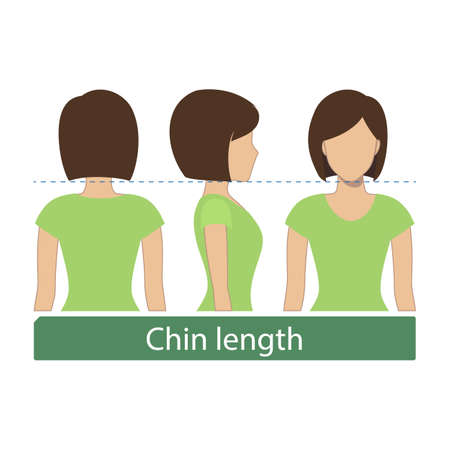 Hair length for haircuts and hairstyles - chin length. Vector. Illustration