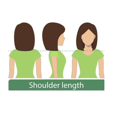 La longueur des cheveux pour les coupes de cheveux et les coiffures - longueur des épaules. Vecteur. Banque d'images - 85502058