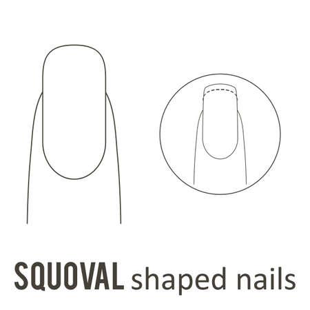 Manicure per unghie Come fare la forma delle unghie squoval. Vettore Archivio Fotografico - 89521665