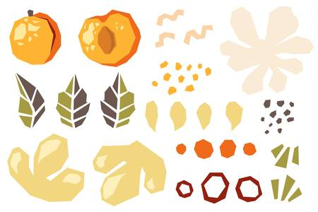Set of various shapes abstract doodle objects, apricot, peach and leaves. Paper cut modern contemporary style. Vector