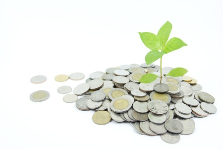 growing money: Concept of business growth