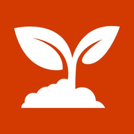 seeding: Seedling icon vector Illustration