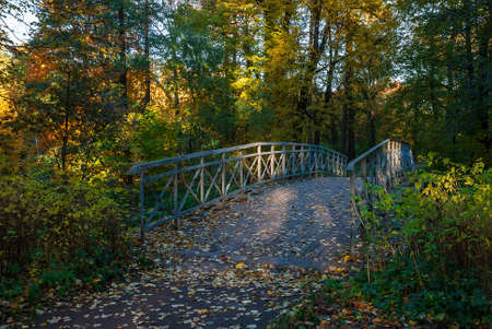 footpath: Wooden bridge in the autumn park Stock Photo
