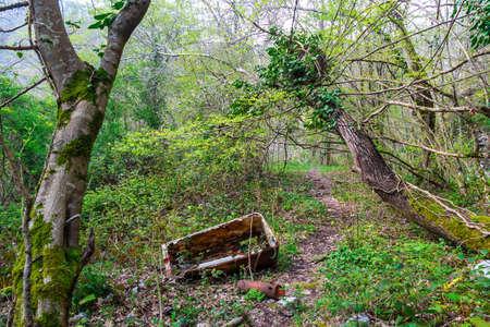 altmetall: Rusty Altmetall hinter zwei Bäumen auf Waldweg