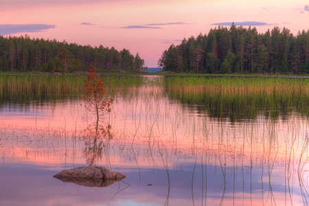lake sunset: Evening landscape on the lake with beautiful sky