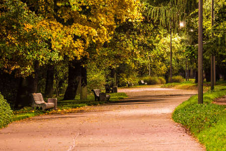 Night view of alley in the Kirov Central Culture and Leisure Park, Saint Petersburg, Russia