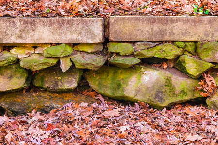 The rough stone wall in the autumn park with dry leaves Stock Photo