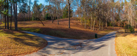 Panoramic view of the footpaths, hills and bare trees in the Lullwater Park, Atlanta, USA Stock Photo