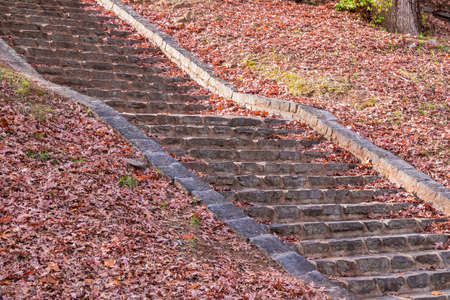 The stone stairs and dry leaves in the autumn park in sunny day