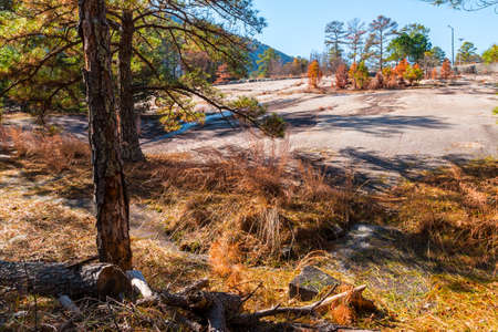 Landscape with trees, dry grass and stone ground in the Stone Mountain Park in sunny autumn day, Georgia, USA