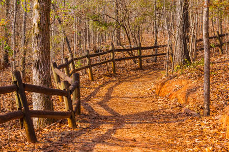 The footpath with fence and thicket in the Providence Canyon State Park in sunny autumn day, Georgia, USA Stock Photo