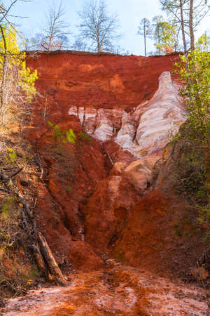 Red loamy wall of Providence Canyon bottom view in sunny autumn day, USA