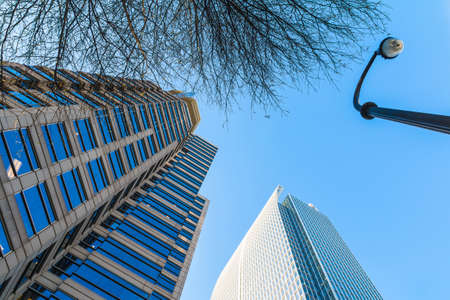 Bottom view of a streetlight, a tree and skyscrapers on the background of clear sky, Atlanta, USA Stock Photo
