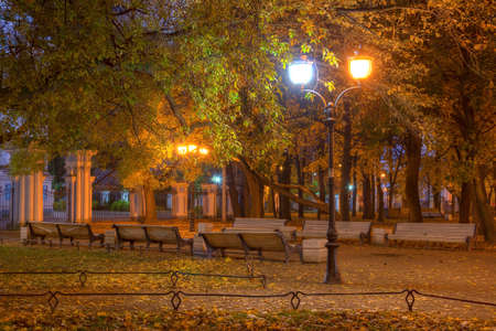 Night autumn view of illuminated alley with benches in Nikolskiy garden, St. Petersburg, Russia Stock Photo