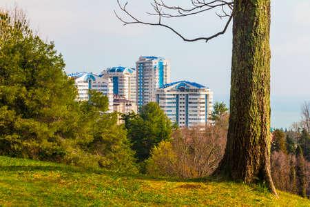 Aerial view of the housing estate through trees of Arboretum, Sochi, Russia Stock Photo