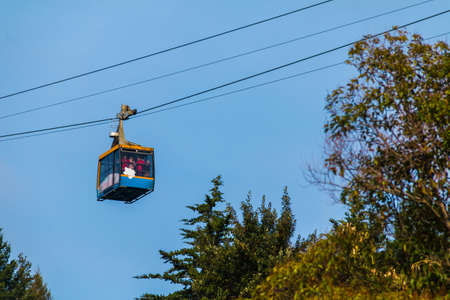 Bottom view of the cabin of cableway over the trees of Arboretum in sunny day, Sochi, Russia Фото со стока