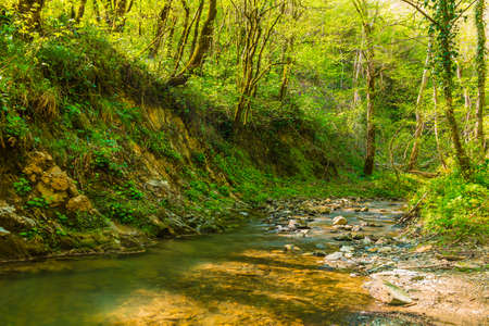 Long exposure view of Glubokaya river with high steep shore in spring sunny day, Sochi, Russia