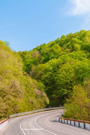 A hairpin turn on the background of mountainsides with thicket in bright summer day