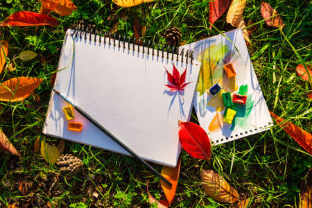 The clear album, watercolor and brush lying on the ground with green grass, cones and dry leaves Stock Photo
