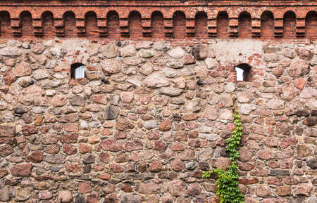 The stone fortress wall of the Vyborg Castle with two loopholes and ivy, Vyborg, Leningrad Oblast, Russia