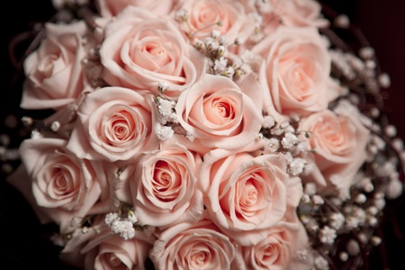 Pink fresh roses  bouquet, beautiful flowers isolated on black background