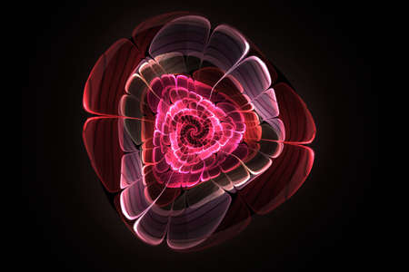 Fractal glow rose flower computer-generated. Glowing pink flower on black background