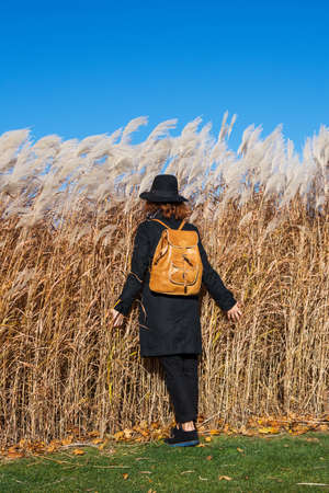 Fashion shooting, a girl in a coat and hat against a background of reeds. Back view